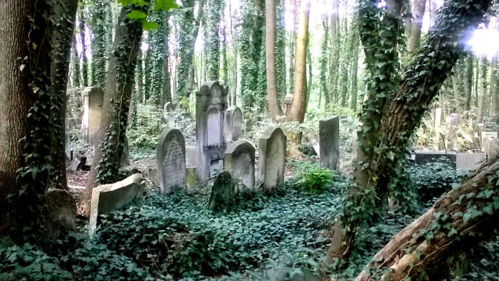 cmentarz zydowski warszawa