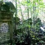 Pomysł na weekend w Warszawie: zwiedzanie cmentarza żydowskiego przy Okopowej