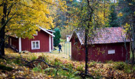 czerwone domy szwedzkie