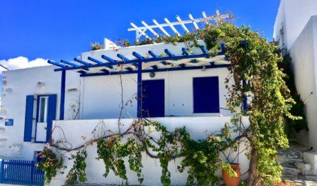 biały dom grecki z niebieskimi okiennicami porośnięty winoroślą