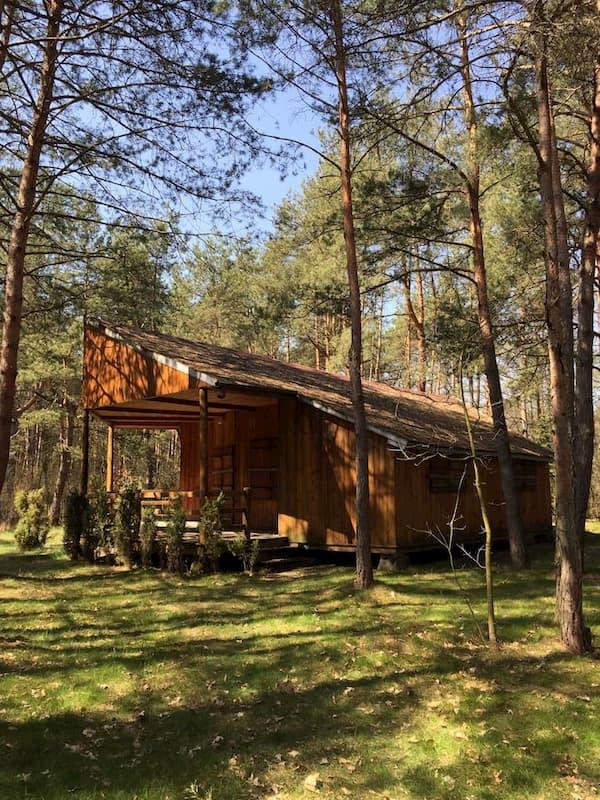 drewniany domek w lesie z airbnb