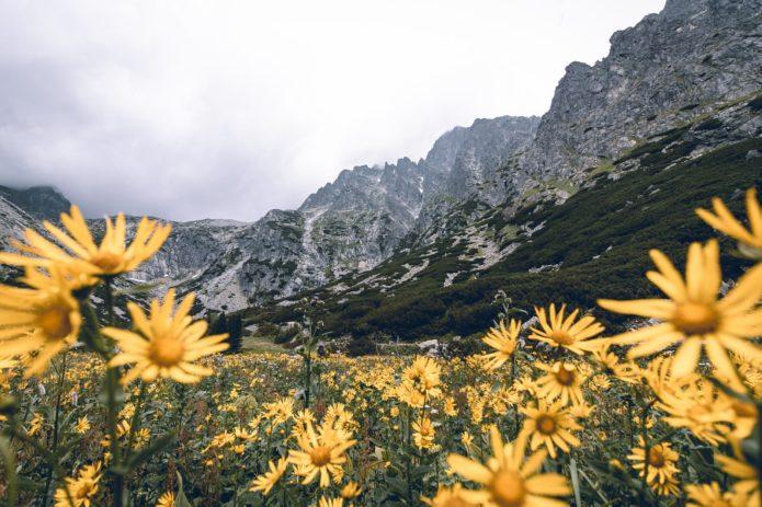 weekend w górach polska
