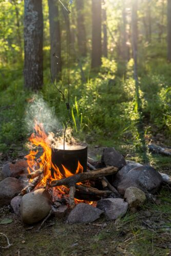 ognisko w lesie
